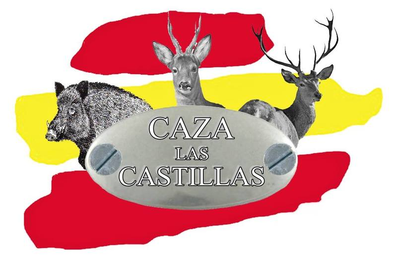Image result for caza las castillas